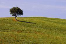 Free Landscape,Tuscany Stock Image - 2678931