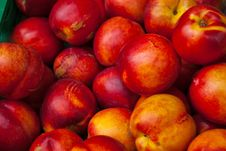 Free Colorful Fresh Nectarines Royalty Free Stock Image - 26700066