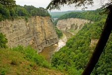 Free Letchworth State Park Canyon Royalty Free Stock Photo - 26703315