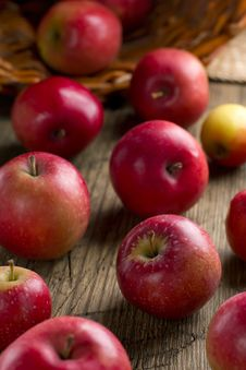 Free Ripe Apples Stock Photos - 26705233