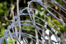 Free Razor Wire Royalty Free Stock Photos - 26706548