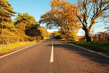 Free Beautiful Autumnal Road Stock Image - 26712971