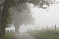 Free Fog Hovers Around A Country Lane. Stock Image - 26713091