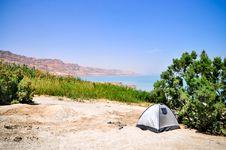 Free Oasis Near The Dead Sea Stock Image - 26718471