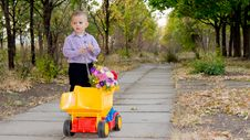 Free Small Boy With Yellow Truck And Flowers Stock Photos - 26718733