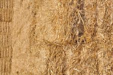 Closep On Straw Stock Photography