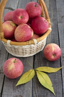 Free Red Apples In A Basket Royalty Free Stock Photos - 26722798