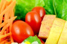 Free Organic Salad Stock Photography - 26722872