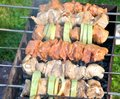 Free Tasty Grill Kebab On A Charcoal With Onion Royalty Free Stock Photo - 26736975