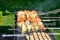 Free Tasty Grill Kebab On A Charcoal With Onion Stock Photos - 26736993