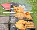 Free Tasty Grill Kebab On A Charcoal Stock Photo - 26737100
