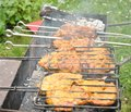 Free Tasty Grill Kebab On A Charcoal Royalty Free Stock Photography - 26737217
