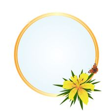Frame With A Yellow Flower Royalty Free Stock Image