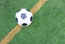 Soccer Football Field Stadium Grass Royalty Free Stock Photo