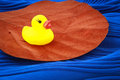 Free Duck Toy On A Leaf Royalty Free Stock Image - 26744756