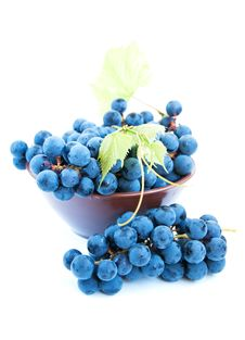 Free Blue Grape Clusters With Leaves Stock Photo - 26741070