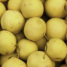 Free Pears Royalty Free Stock Photos - 26749598
