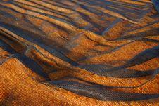 Black Net Covers Orange Field Stock Images