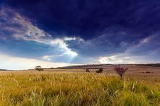 Free Autumn Rural Scenery With Stormy Sky Royalty Free Stock Image - 26764166