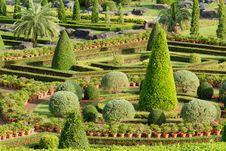 Free Ornamental Garden. Royalty Free Stock Photo - 26771955