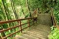 Free Stone Ladder Stock Image - 26781841