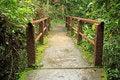 Free Footbridge Stock Photo - 26781940