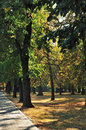 Free Path In Autumn Park Stock Photography - 26788032