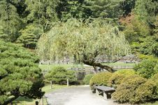 Free Charming Japanese Garden Stock Images - 26783364