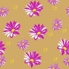 Free Asters Royalty Free Stock Image - 26788276