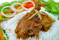 Free Chicken Curry Royalty Free Stock Photo - 26791145