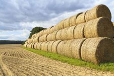 Free Golden Hay Bales In The Countryside Stock Photography - 26791292