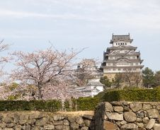 Himeji Castle In Cherry Blossom Season Stock Photography