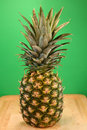 Free Pineapple Royalty Free Stock Photography - 2681447