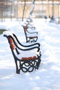 Free Park In Winter Stock Photos - 2681963