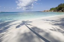 Free Tropical Beach Royalty Free Stock Photography - 2682667