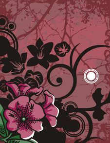 Free Floral Background Series Stock Photos - 2685663