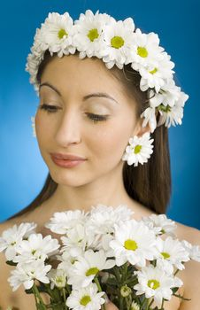 Free Modest Daisy Royalty Free Stock Image - 2688376