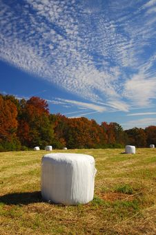 Helen S Farm At Fall Season Stock Images