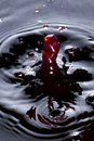 Free Wine Droplet Royalty Free Stock Images - 26812009