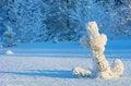 Free Winter Landscape Stock Images - 26812064