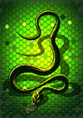 Free Snake Green Royalty Free Stock Photography - 26818457
