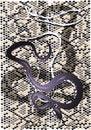 Free Snake Skin Stock Image - 26818551