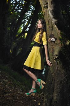 A Girl Leaning Against A Tree. Stock Images