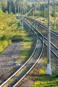 Free Railroad Tracks In Forest Vertical View Royalty Free Stock Photo - 26816995
