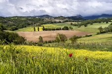 Free Tuscan Countryside In Spring Stock Image - 26821181