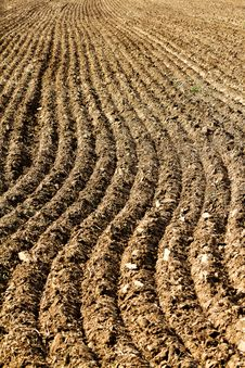Free Plowed Stock Photography - 26822512