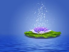 Free Water Lily Illustration Royalty Free Stock Photos - 26825778