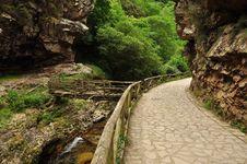Free Asturias, Spain: Mountain Path Royalty Free Stock Images - 26825889