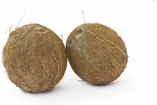 Free Coconuts Royalty Free Stock Images - 26826369
