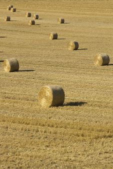 Free Bales Of Hay Stock Photo - 26827020